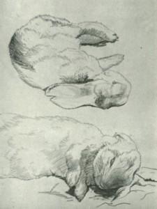 Beatrix Potter sketch