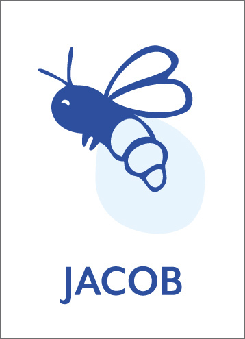 navy blue bug