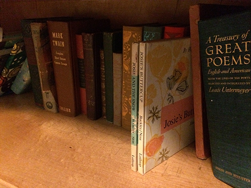 photo of older hardcover books on light wood bookshelf