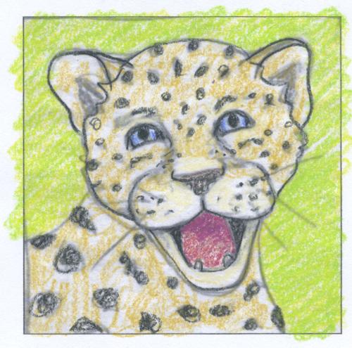 wild animal children illustration