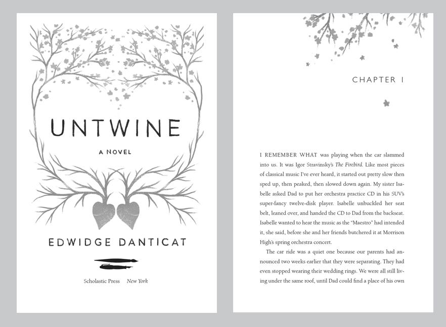 Professional Book Designer Picture Design Typesetting New